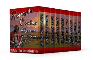 rb4u-cowboy-3dmedium